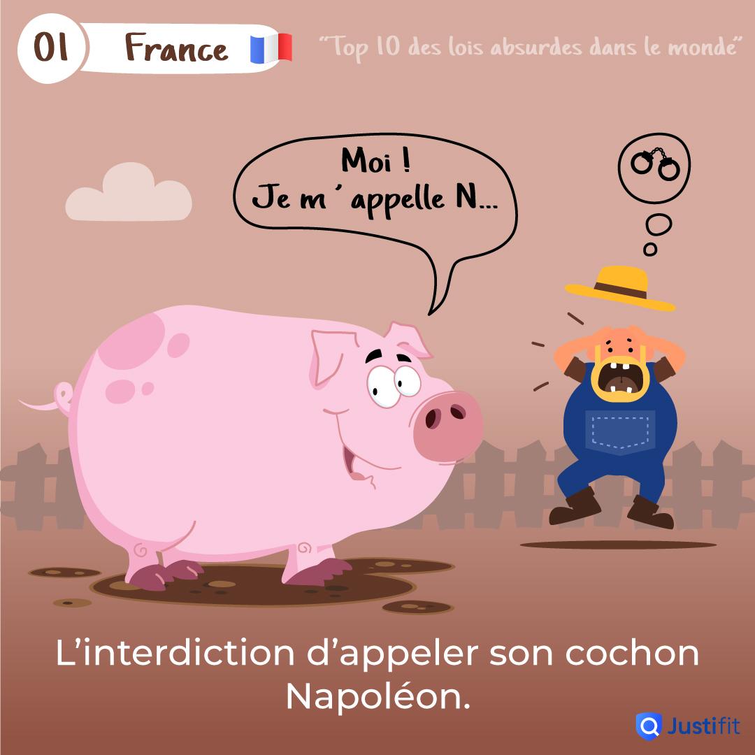"""Alt=""""L'interdiction d'appeler son cochon Napoléon"""""""